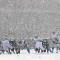 football snow 1208