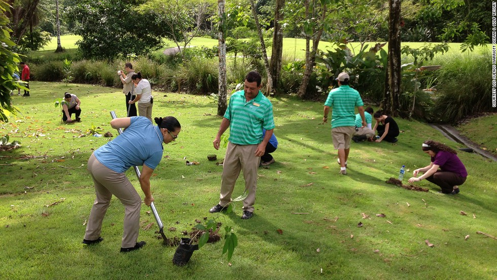 Guests can add to a 1,100-acre rainforest by planting tropical almond saplings, a native species donated to the hotel by a nearby national park.