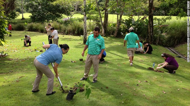 A chance to make Costa Rica even greener.