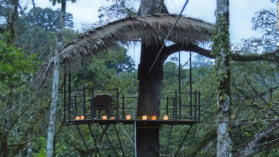 The Nest is a canopied dining perch 60 feet up in a Ceiba tree. Before the excitement of eating in a tree, you'll have to zip-line across a 400-foot cable.
