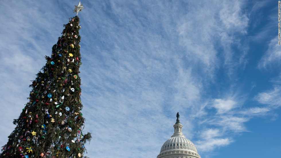 A Christmas tree stands on the West Lawn of the U.S. Capitol on December 11.