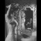 Joan Fontaine 12