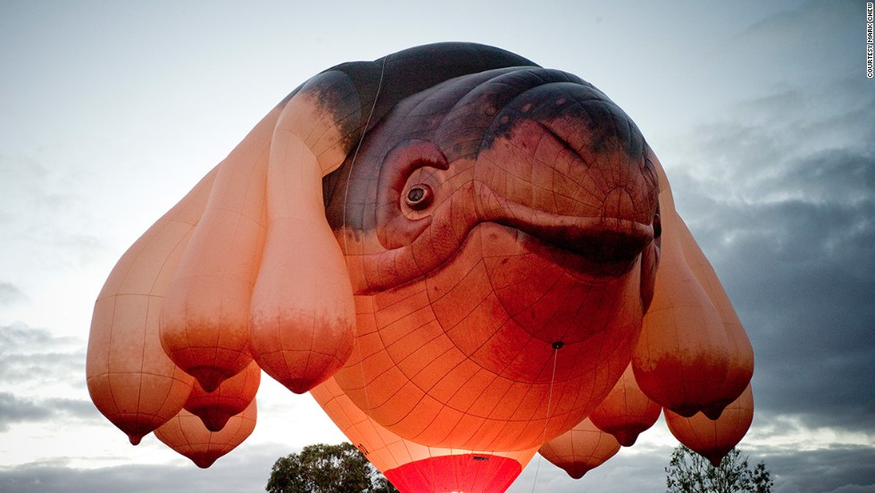 """The Skywhale, a curiously designed 34-meter-long hot air balloon, was commissioned by Canberra as part of its 2013 centenary celebrations. One observer called it """"a whale with a deformed scrotum."""""""