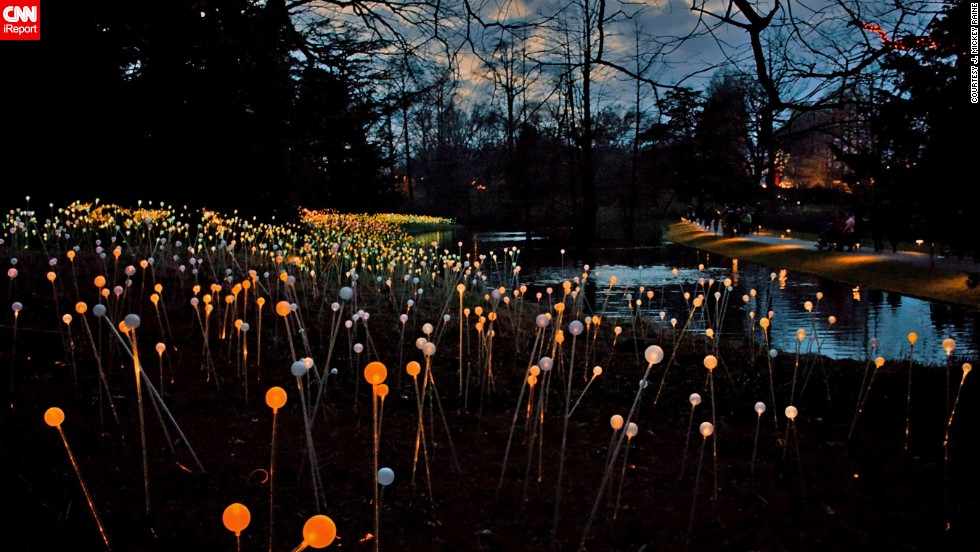 """This beautiful """"Field of Lights"""", by artist <a href=""""http://www.brucemunro.co.uk/"""" target=""""_blank"""">Bruce Munro</a>, can be found in Pennsylvania's <a href=""""http://longwoodgardens.org/"""" target=""""_blank"""">Longwood Gardens</a>, who have an annual Christmas display. Mickey Raine and his wife Elaine count themselves lucky to be living close to it, """"it's hard to fathom anyone loving the Christmas festivities each year there as much as we do,"""" Mickey said."""