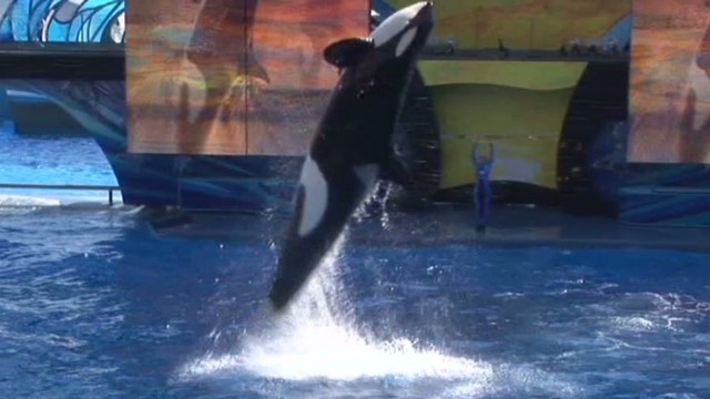 SeaWorld defends record in open letter