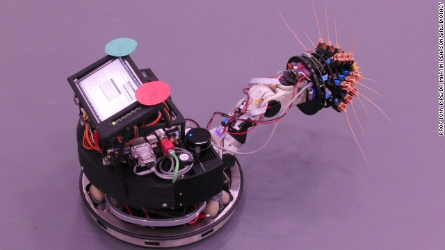"""Shrewbot"" follows ""Whiskerbot"" and ""Scratcbot"" in developing artificial whiskers. (Photo coutesy of Tony Pipe and Martin Pearson, BRL BIOTACT)"
