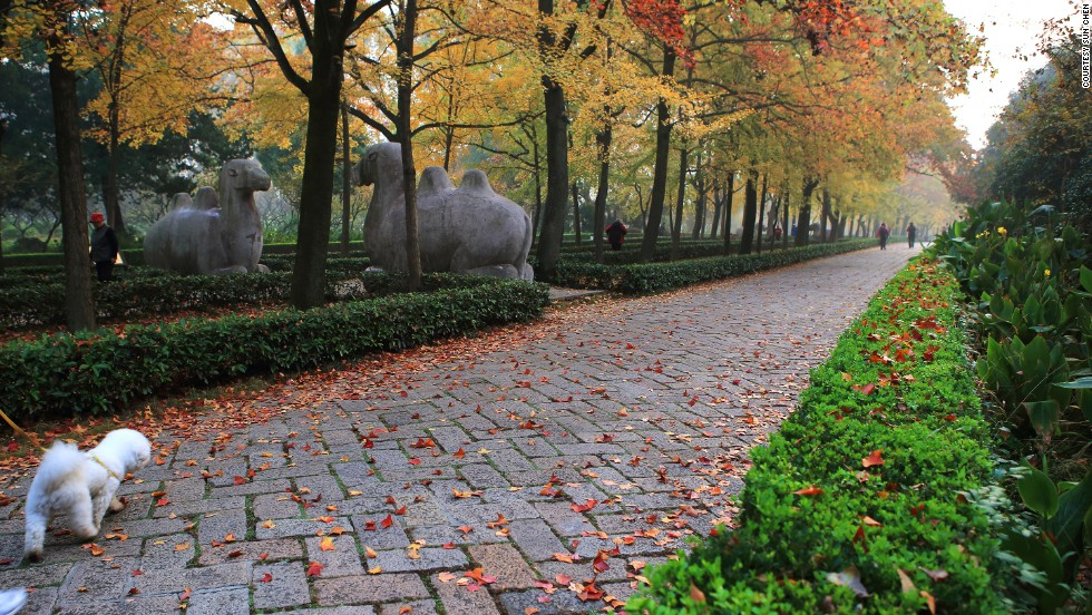 "Sun's favorite place to linger on the mountain is Stone Elephant Road in front of Ming Xiaoling Mausoleum. <br />""Stone sculptures made from the Ming Dynasty are picturesque but irregularly placed along a line of colorful trees,"" says Sun. ""It's especially beautiful in autumn."""