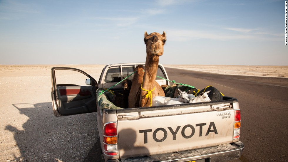 """(The local people) might get around now in air-conditioned SUVs,"" says Humphreys, ""but they haven't been removed from the desert long enough to think that going out into it and having a miserable time is a good idea."""