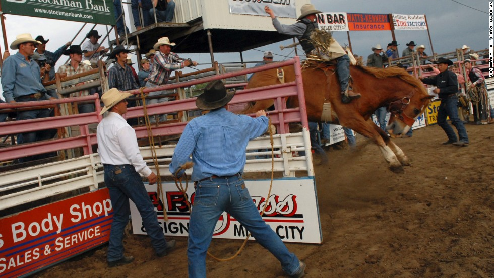 "Celebrating its 100th anniversary this year, the Miles City Roundup celebrates the best of rodeo competition. The roundup is part of the <a href=""http://www.buckinghorsesale.com/history.html"" target=""_blank"">Bucking Horse Sale</a> (May 15-18), which is in its 64th year and features some of the world's top riders and animals. There's also bull riding, horse racing, sheep shearing, concerts, a morning parade and street dances on Friday and Saturday nights. <br />"