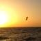 Kiteboard3