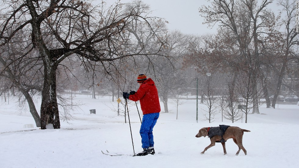 With his dog in tow, a man skis across heavy snow in Humboldt Park on January 2.