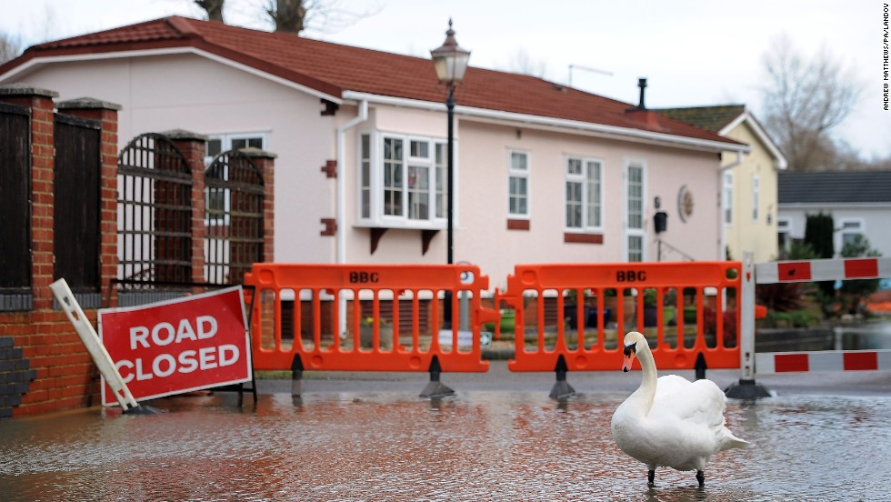 A swan wades in floodwaters from the River Stour in Bournemouth, England, on January 3.