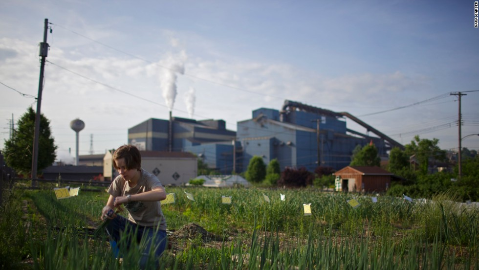 "Since taking office in 2005, Braddock Mayor John Fetterman has led a series of urban renewal projects, including the creation of <a href=""http://www.growpittsburgh.org/what-we-do/we-grow-food/braddock-farms/"" target=""_blank"">Braddock Farms</a> through Grow Pittsburgh. Another nonprofit, the <a href=""http://braddockyouth.org/?page_id=872"" target=""_blank"">Braddock Youth Group</a>, runs three more urban garden sites in the community. Teens from the program converted the vacant lots into gardens and tend them all year. They also learn to prepare the food."