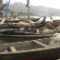 1 Local Fisherman Limbe Beach