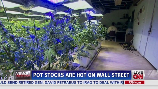 Pot stocks are hot on Wall Street