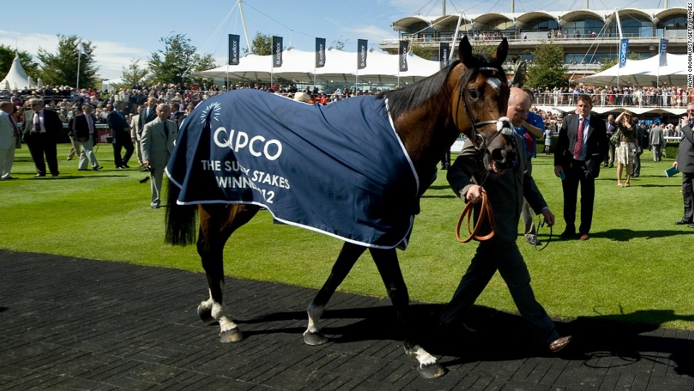 Frankel is covered by a QIPCO-branded horse blanket after winning the Sussex Stakes at Glorious Goodwood in 2012.