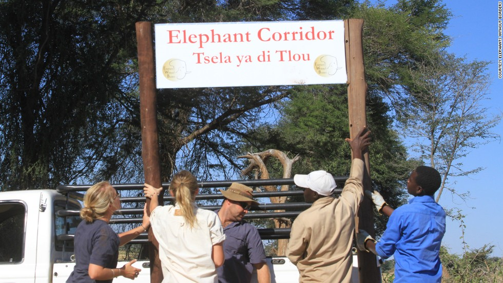 The overall plan of EWB is to have designated wildlife corridors in legislation, so as towns grow there are set paths for elephants to use and ultimately lessen the impact of their growing numbers.