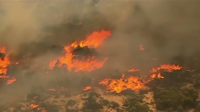 vo australia brushfires_00004211.jpg