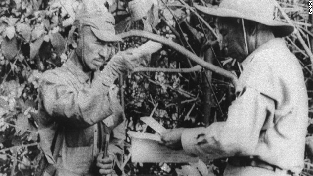 Japan's last WWII fighter dies