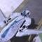 Sky Whale - aerial