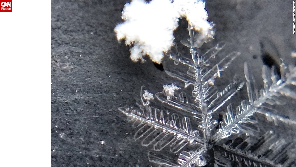Goodman used his iPhone 5s and a macrolens attachment to photograph these delicate snowflakes.