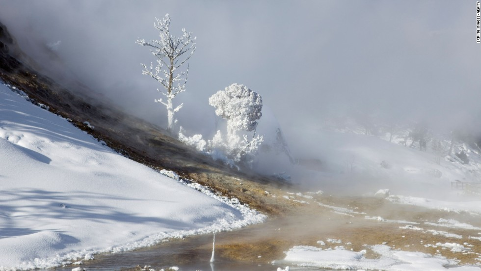 With no crowds to block the view, Yellowstone becomes a wonderland for wolf spotters and other nature lovers in winter.