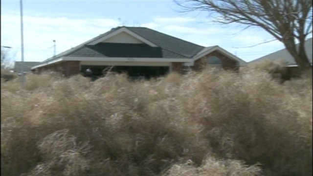 dnt new mexico tumbleweeds take over town_00003326.jpg