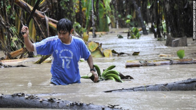 A native collects bananas from a flooded plantation in Puerto Yumani, 15 km from Rurrenabaque, northeast Bolivia. The Bolivian government has declared national emergency due to floodings caused by heavy rains which, up to now, have left more than 40 dead and about 37,000 families affected. AFP PHOTO/Aizar Raldes (Photo credit should read AIZAR RALDES/AFP/Getty Images)