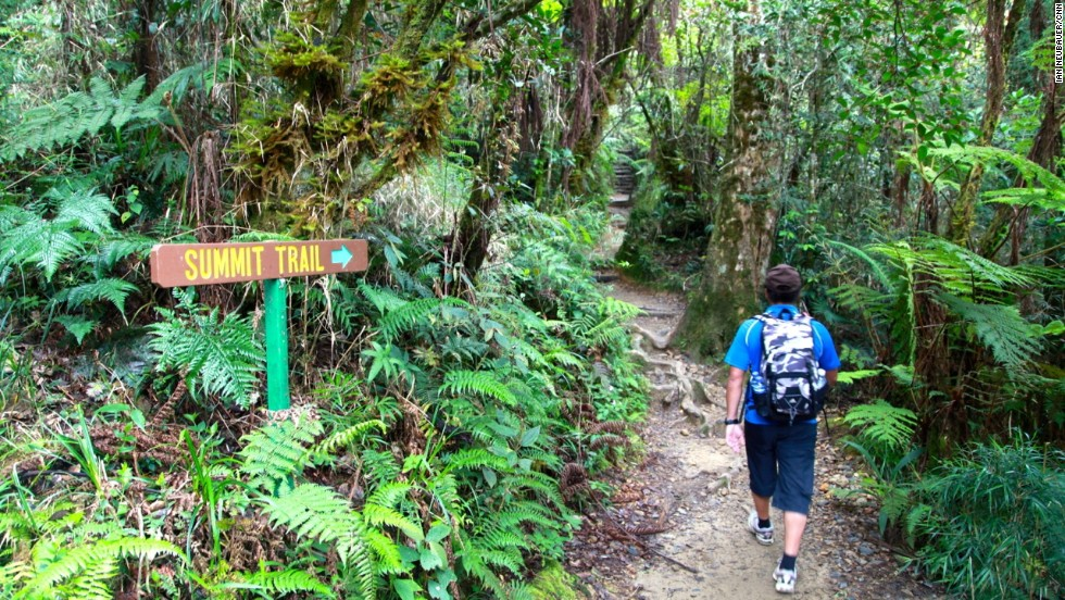 Day one of the hike to the summit of Mount Kinabalu is a slow and steady five-hour ascent through the lower mountain rainforest along six kilometers of reinforced carved steps.