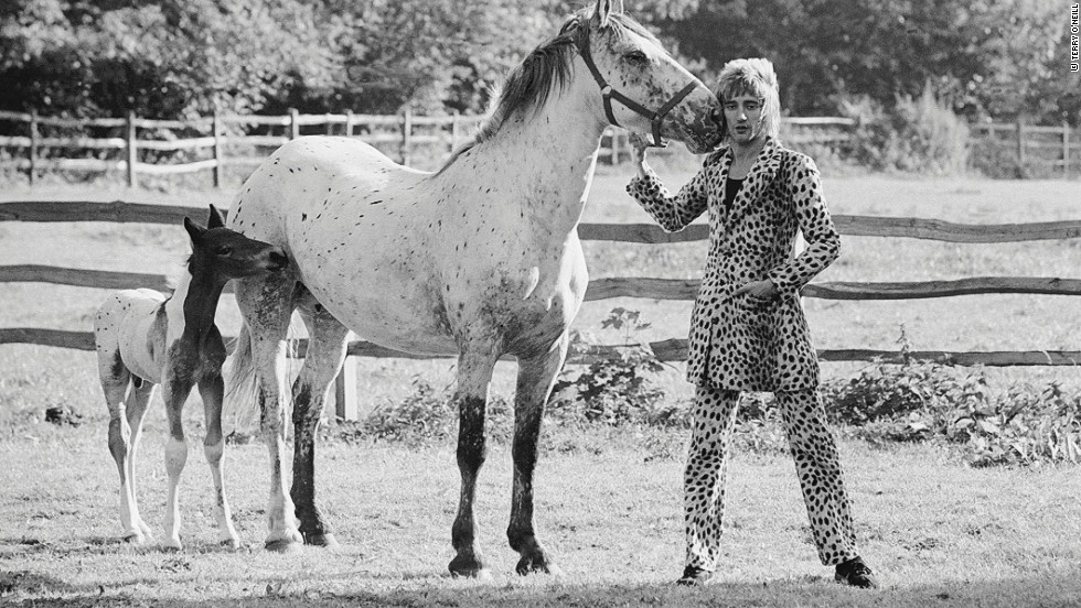 "O'Neill says this photo of a 17-year-old Rod Stewart largely came down to chance. ""I went down to his house in Essex and he said, 'Do you want to do the shoot with horses?' The horse coat he had on totally matched the horse. You make your own luck but it's all luck."""
