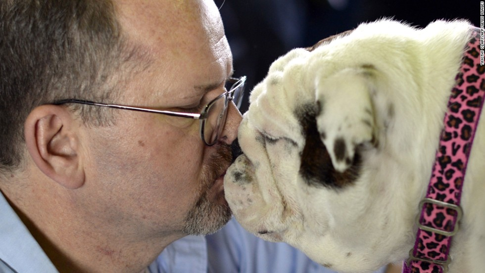 Dennis Murphy and his bulldog, Brooklyn, share a moment on February 10.