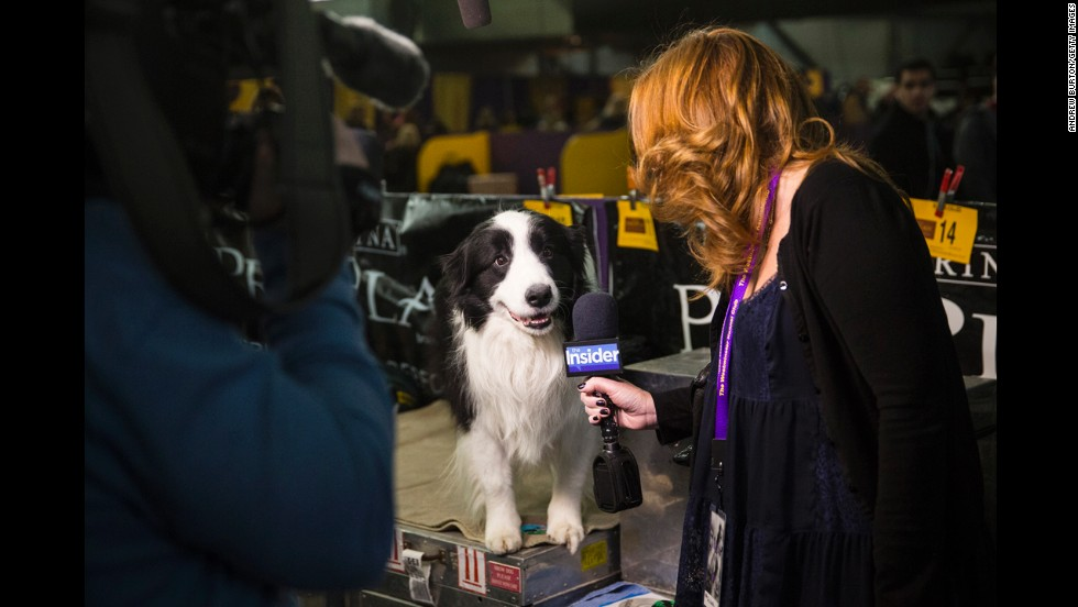 A woman interviews a dog February 10.