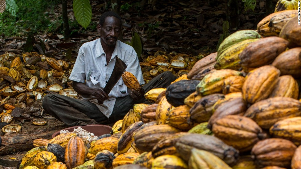 Keeping Cocoa Farming Alive in West Africa |Coco Africa