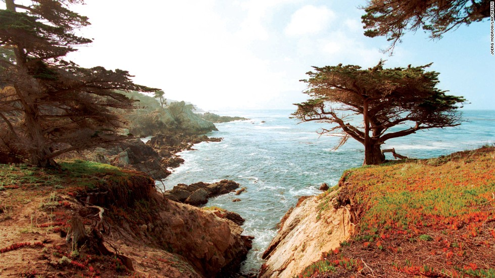 Explore this tiny seaside village, head to nearby wine country or drive to Big Sur to see the glorious Pacific Ocean.
