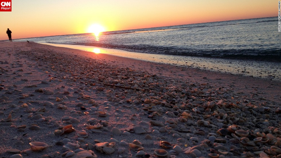 """<a href=""""http://ireport.cnn.com/docs/DOC-1082776"""">Michelle Sweeney</a> says a storm had passed through the day she arrived at Pensacola Beach, Florida, in November, and the sand was covered in seashells. She spent hours finding treasures to add to her collection."""