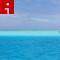 beaches bora bora boat