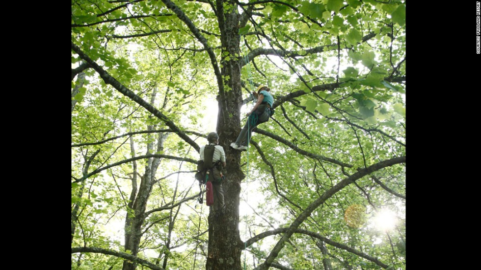 Primland Resort's location on 12,000 acres of land in Virginia's Blue Ridge Mountains makes it an ideal spot for outdoor activities such as tree climbing. Another fun offering -- given the abundance of space  -- is geocaching, a high-tech treasure hunt.