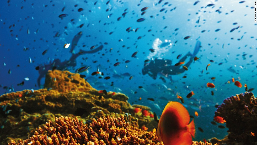 Australia's Great Barrier Reef is shrinking. Snorkeling over it may become increasingly rare.