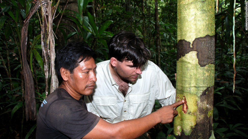 The Amazon rainforest holds more plant species than anywhere in the world. Here, a medicine man from the Jivaro tribe teaches physician-ethnobotanist Christopher Herndon about the powerful sap of a rainforest tree used to combat bacterial and fungal infections. In an era of rising antibiotic resistance, what untold secrets are being lost with each acre of forest that is burned?