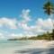 tripadvisor dominican republic