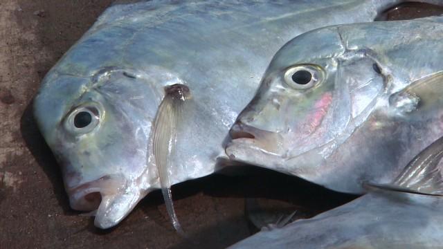 Sri Lanka's freshest seafood
