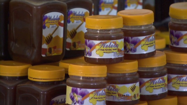 spc marketplace africa ethiopia honey welela_00013621.jpg