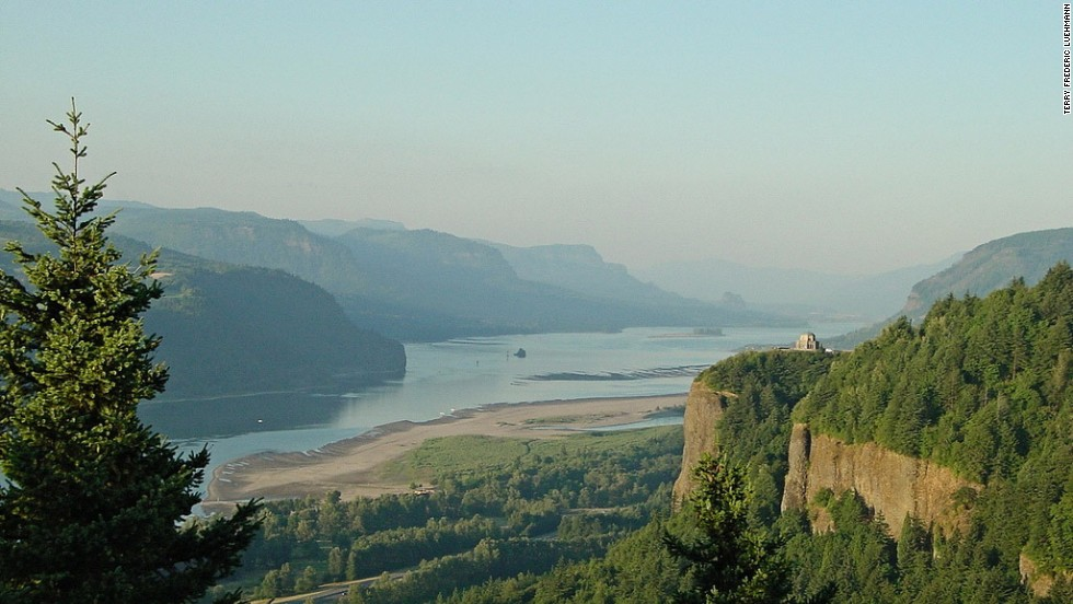 Starting in March, you can see Columbia kittentails and other wildflowers along the Historic Columbia River Highway in Oregon.