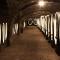 Croatia - vinski podrum