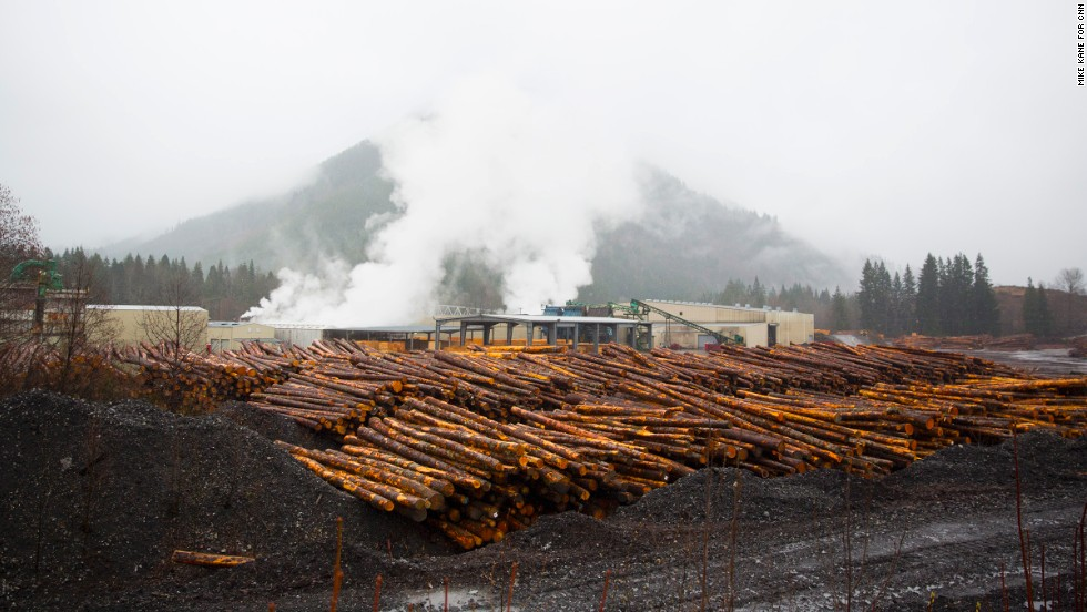 Timber is seen at a lumberyard just outside of Darrington on Saturday.