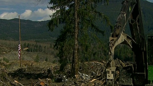 Toxic chemicals hinder landslide search