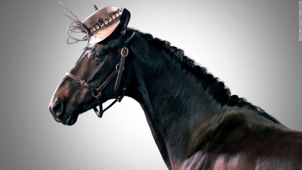 """To help mark <a href=""""http://www.thecrabbiesgrandnational.co.uk/festival-days/ladies-day/"""" target=""""_blank"""">Ladies' Day</a> at Britain's Grand National horse racing festival, Olivia's hats -- which can cost up to $600 -- were placed on these equine models as part of a special photo shoot."""
