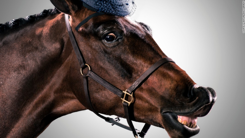 """The assistants chose hats that best suited each horse's personality. """"Some were quite cheeky, others more regal with their heads up,"""" said Mayfield."""