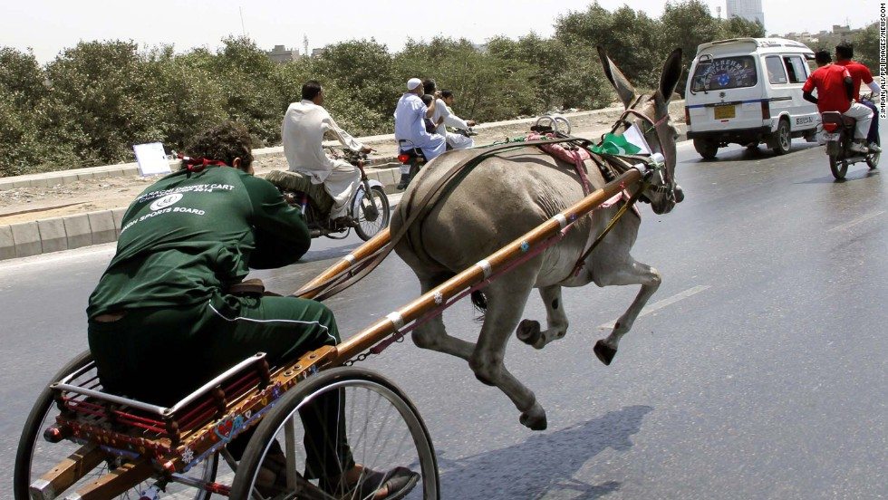 A donkey-cart rider in Karachi, Pakistan, competes in a race on Sunday, April 13.