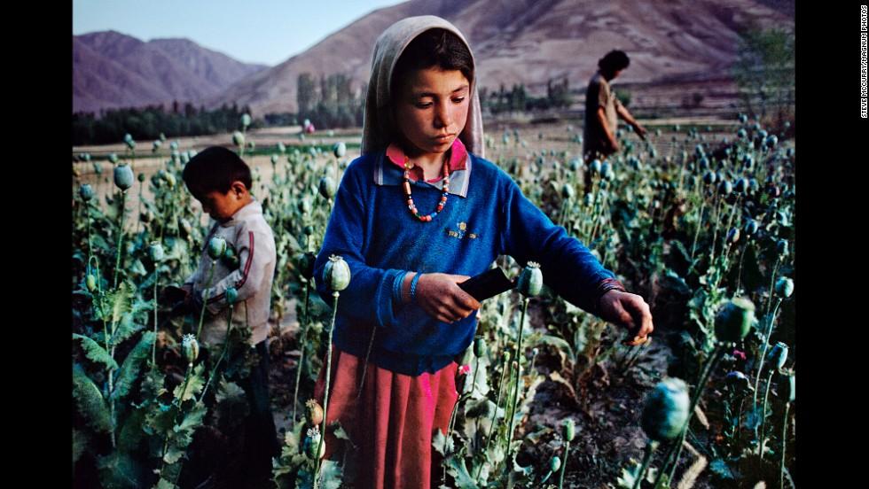 Children work in an opium field in Badakhshan, 1992.